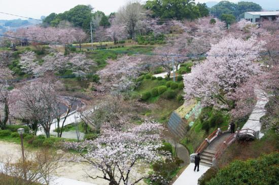 城山公園の展望台から撮影